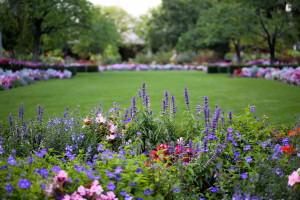 декоративный сад