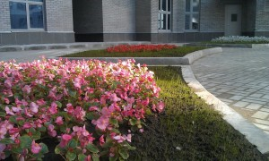цветник на свердловской набережной