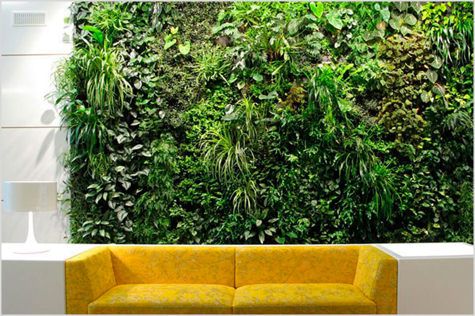 Зеленая стенка